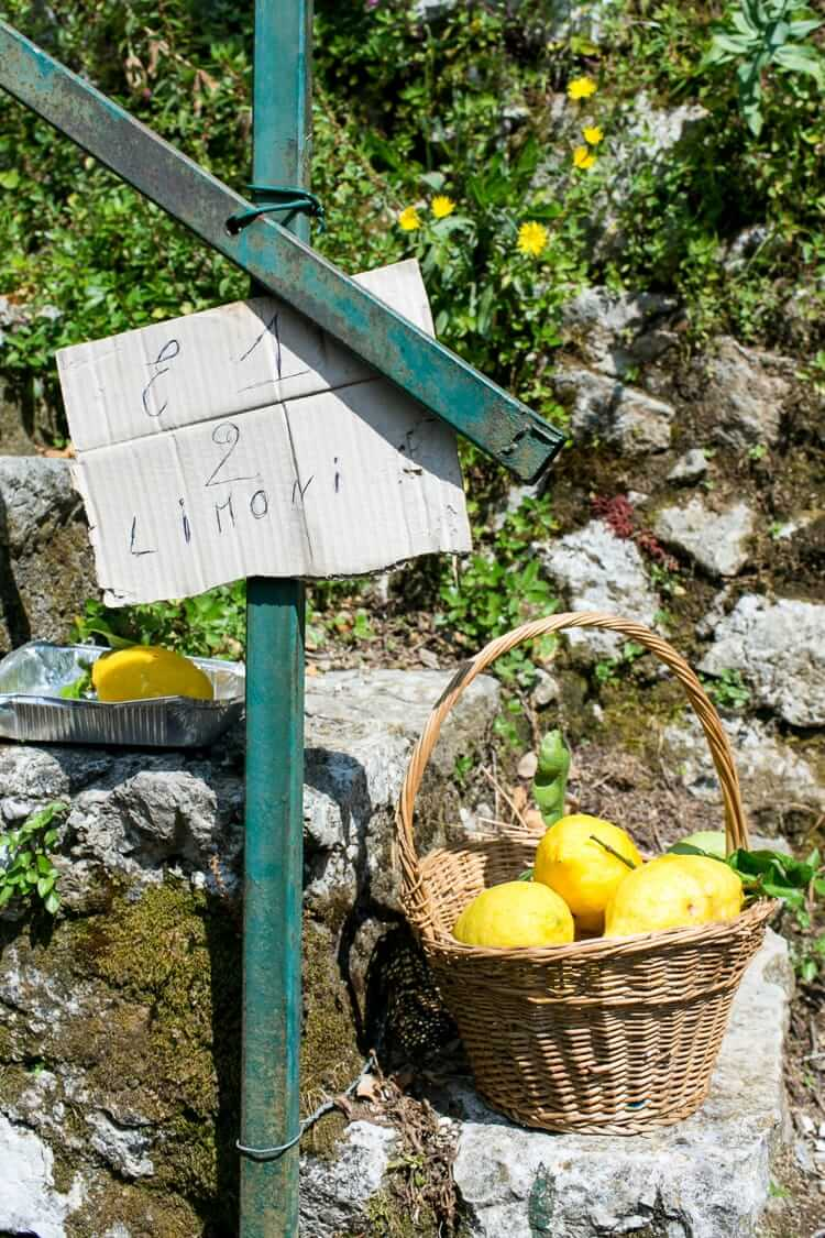 Amalfi Coast Italy | Positano | Lemons