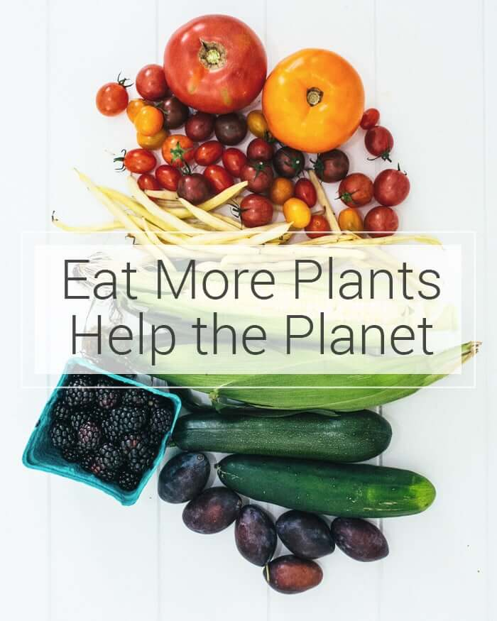 Eat More Plants & Help the Planet | A Couple Cooks