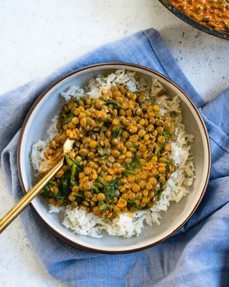 Quick Coconut Lentil Curry