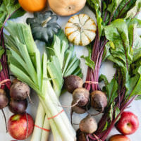 Whole Food Plant Based Diet (WFPB) Guide & Recipes