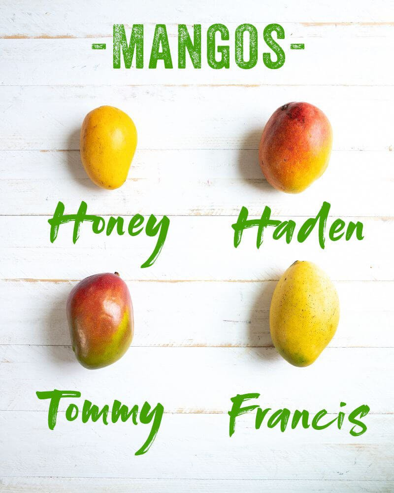 Mango varieties | Honey mango