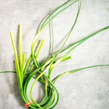 Garlic Scape Pesto | A Couple Cooks