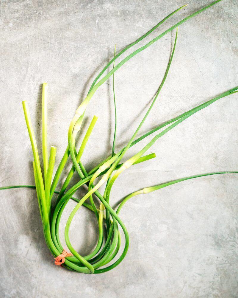 Simple Garlic Scape Pesto | A Couple Cooks