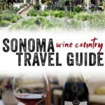Thinking of visiting Sonoma wine country? Sonoma is the new Napa...and for new parents, it's even possible to visit wine country with a baby in tow. #travel #sonoma #california #wine #winetravel #babyfriendly #winecountry