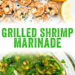 Grilled Shrimp Marinade