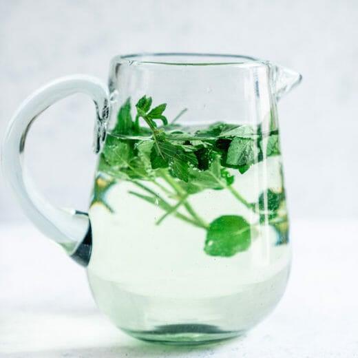 Easy Mint Water Recipe