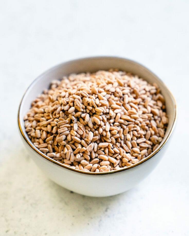 Instant Pot Rice, Farro, Bulgur, & Quinoa