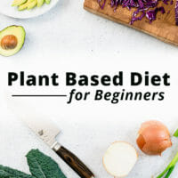 Plant Based Diet Guide & Recipes