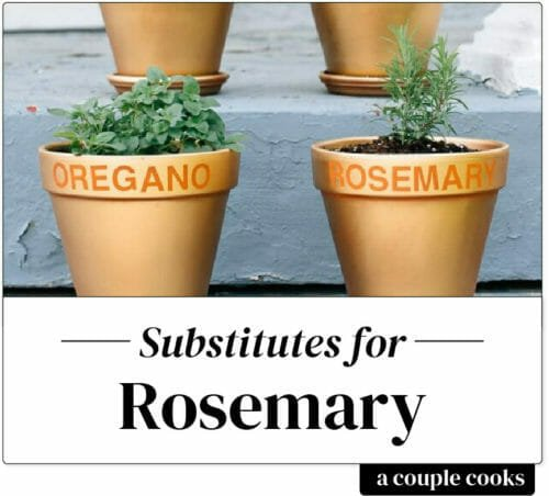 Substitute for Rosemary