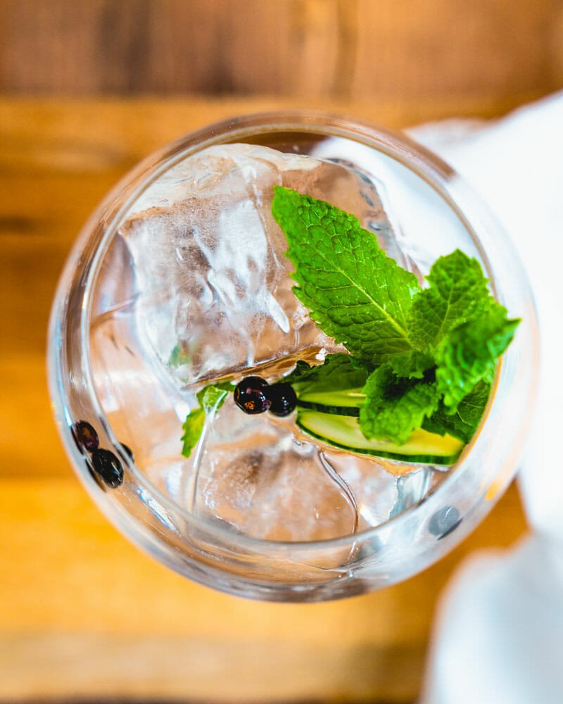 Gin and tonic garnish