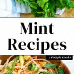 Mint Recipes