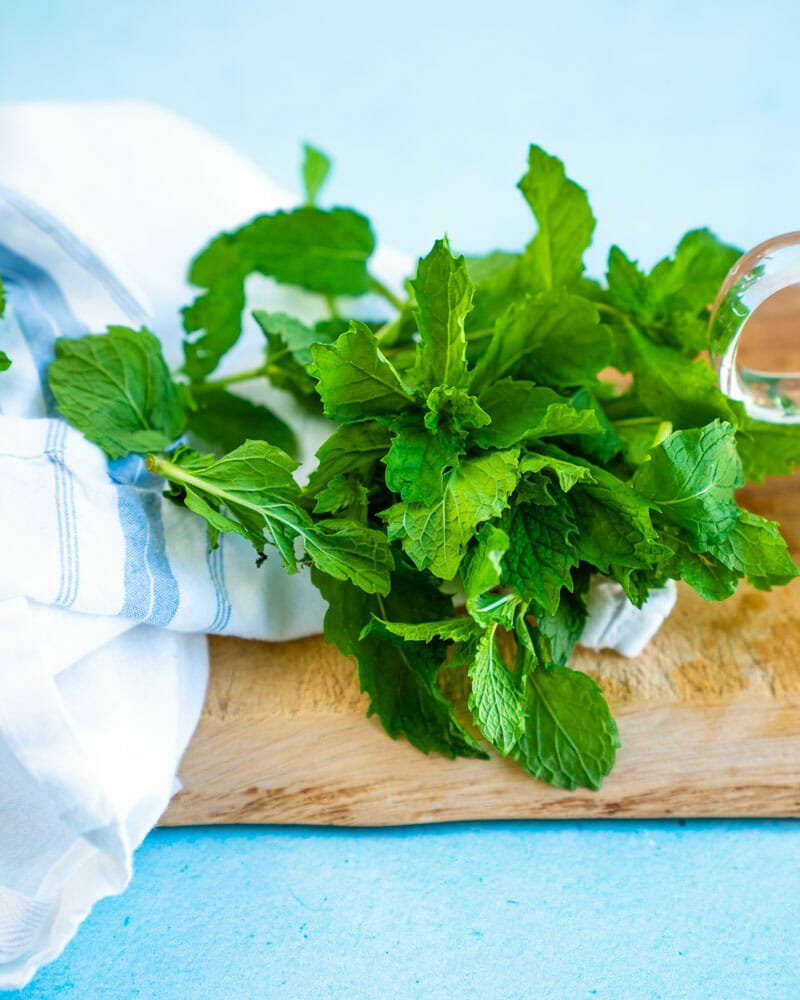 Mint: peppermint and spearmint