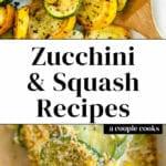 Zucchini and Squash Recipes