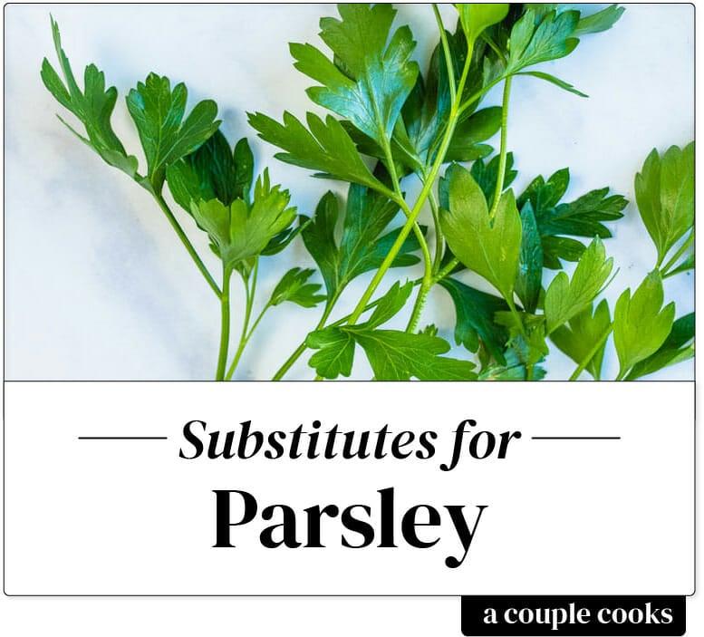 Parsley substitute