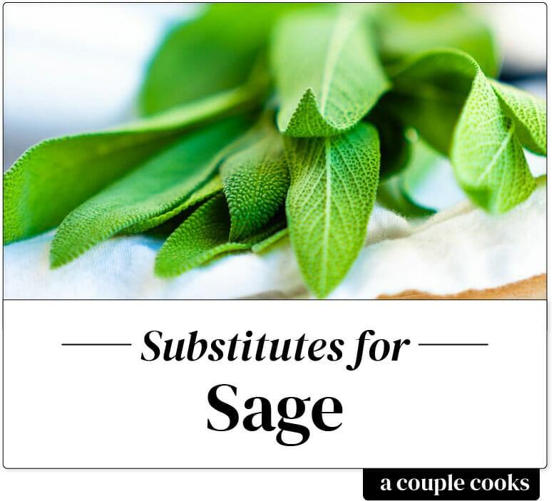 Sage substitute