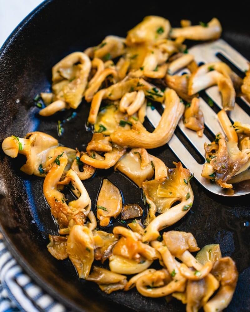 Oyster mushrooms recipe