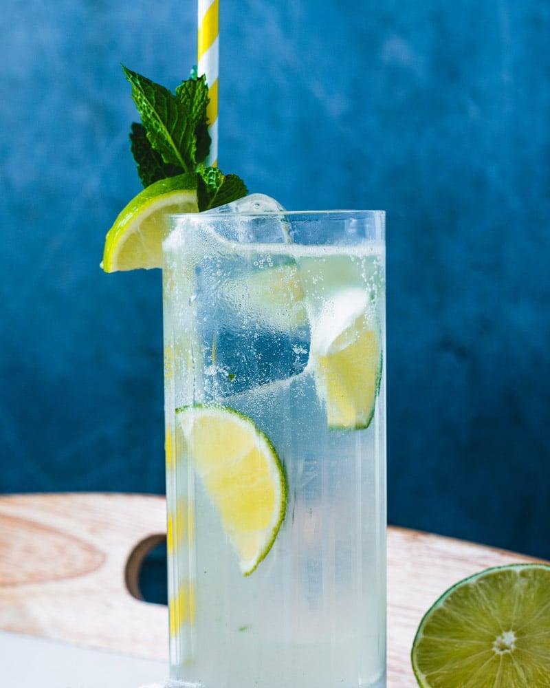 Vodka Mojito